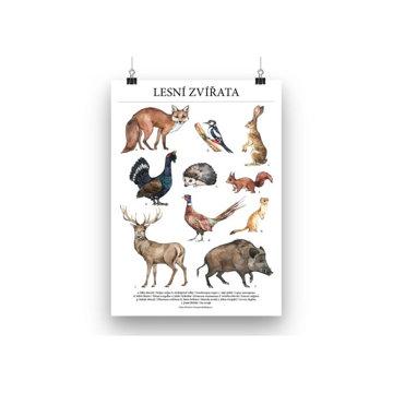 Obrázek Plakát lesní zvířata